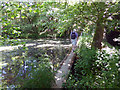 TQ3730 : Public footpath over fish pond dam by Robin Webster