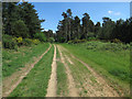 TL7490 : Track to Weeting by Hugh Venables