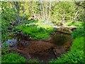 NH6755 : Rosehaugh Burn by valenta