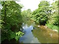 SO5567 : River Teme by Philip Halling