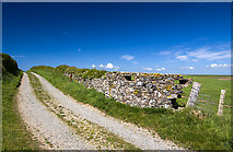 SH3368 : North Wales WWII defences: Ty Croes Camp, Anglesey - Loopholed Wall (1) by Mike Searle