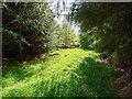 NH6655 : Matheson's Croft by valenta