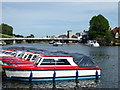 SU8586 : Hire boats on the Thames at Marlow by Rod Allday