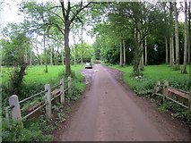 SP2050 : Atherstone on Stour Road Through Woodland by Roy Hughes