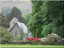NY3916 : St Patrick's church amidst the richest flora by Des Colhoun