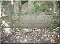 SZ0377 : Guidestone, Durlston Park by MilestoneSociety