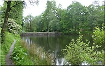 NY3200 : Dam at southern end of Yew Tree Tarn by Russel Wills