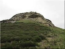 NO1805 : Below Edge Head, Lomond Hills by Bill Kasman