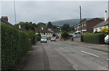 ST2896 : Western end of Parc Avenue, Cwmbran by Jaggery