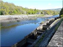 NN9357 : Fish Ladder and River Tummel by derek menzies