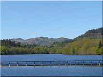 NN9357 : Loch Faskally by derek menzies