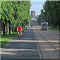 SK5738 : Cyclist and tram on Queen's Walk by John Sutton