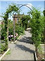 SO7113 : Gazebo in Westbury Court Garden by Philip Halling