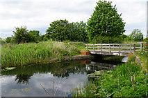 SJ5687 : Bridge over the St Helens Canal by Bill Boaden