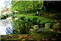 SS2322 : Docton Mill Pond by Nigel Mykura