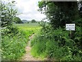 TQ1414 : Path through hedge by Peter Holmes