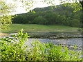 NS1778 : Loch Loskin by M J Richardson