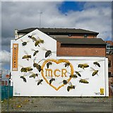 SJ8498 : 22 Bees for Manchester by Gerald England