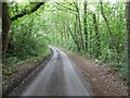 SO7572 : Country road near Lye Head by Philip Halling