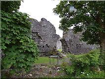 NN1275 : Inverlochy Castle by Craig Brown