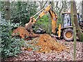 TQ7109 : Digging artificial badger sets in Little High Wood, Bexhill by Patrick Roper