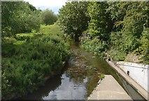 SK5802 : The Saffron Brook next to Hughenden Drive by Mat Fascione