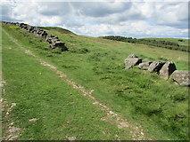 NO2206 : Path to Maiden Castle, Lomond Hills by Bill Kasman