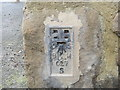 NY9964 : Ordnance Survey Flush Bracket S027 by Peter Wood