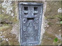 NZ0168 : Ordnance Survey Flush Bracket 2395 by Peter Wood