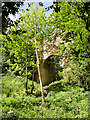 NT2762 : Bridge at Rosslyn Castle by David Dixon