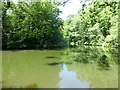 TQ3399 : The medieval fishing ponds in Forty Hall park by Marathon