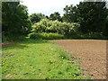 TL1329 : Footpath approaching a belt of trees, Wellbury, Offley by Humphrey Bolton