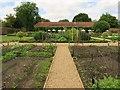 TQ1772 : The Kitchen Garden at Ham House by Steve Daniels