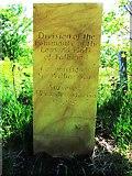 NO2206 : Not a boundary stone! by Bill Kasman