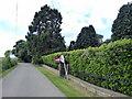 NZ1858 : Hillhead Lane, Gibside by PAUL FARMER