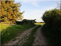 X0982 : Field entrance at Greenlands by Jonathan Thacker