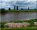 SK8096 : River Trent at Ravensfleet by Mat Fascione