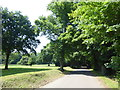 TQ5192 : Access road in Bedfords Park by Marathon