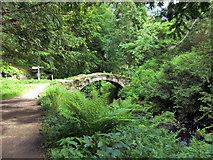 NU0702 : Bridge over Stream, Cragside by PAUL FARMER