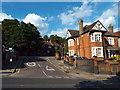 TQ2889 : Springfield Avenue, Muswell Hill by Malc McDonald