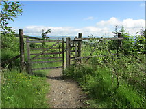 NO2206 : Gate on path to Falkland by Bill Kasman
