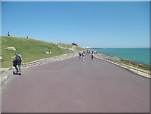 SZ6497 : Southsea, path by Mike Faherty