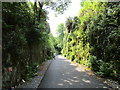 X3397 : Approaching Ballyvoyle Tunnel by Jonathan Thacker