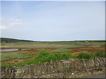 X0980 : The Youghal Mudflats by Jonathan Thacker