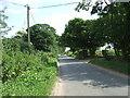 TF9803 : Woodrising Road by JThomas