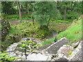 NS1385 : Benmore Botanic Garden by M J Richardson