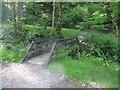 NN1862 : Forest Footbridge, Kinlochleven by G Laird