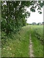 SE8529 : Field path beside the Market Weighton Canal by Graham Hogg