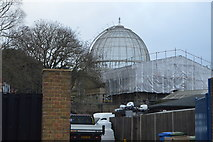 TQ1776 : Conservatory, Syon Park by N Chadwick