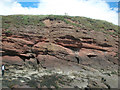 NO6541 : Angular unconformity at Whiting Ness, Arbroath by Adrian Diack